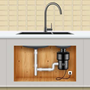 Kitchen Sink Food Waste Disposer