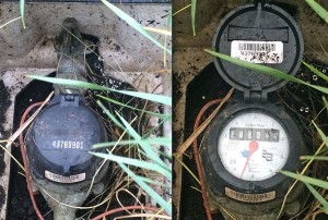 The water meter and main shutoff valve are in the water meter box.