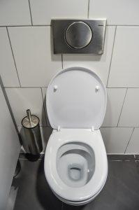 toilet-meticulous-plumbing